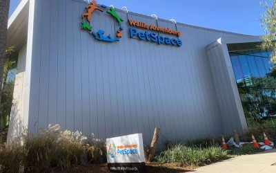 Building Sign for Wallis Annenberg PetSpace in Playa Vista, CA